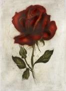 Rose / Radierung 1420