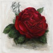 Rose / Radierung 1785qu