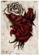 Rose - Radierung 1296